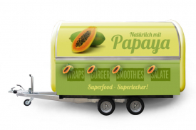 Papaya_BUDDY